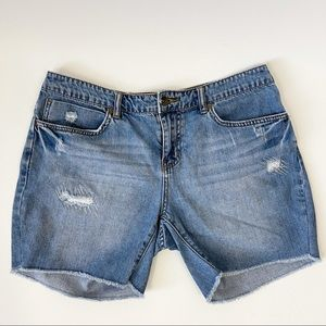 Billabong High Rise Jean Shorts, Size 30